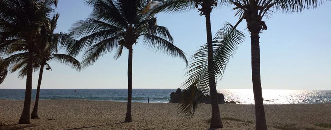 Las 17 playas de Oaxaca se encuentran aptas para uso recreativo: SSO.